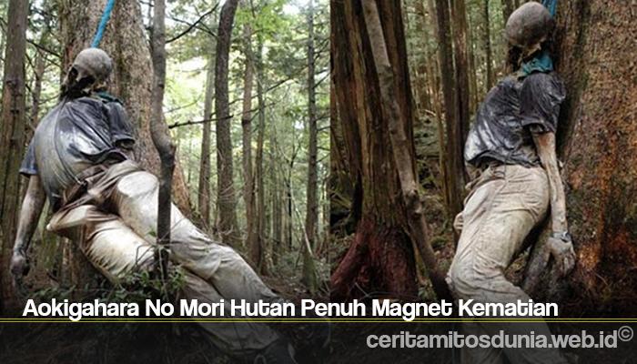 Aokigahara No Mori Hutan Penuh Magnet Kematian