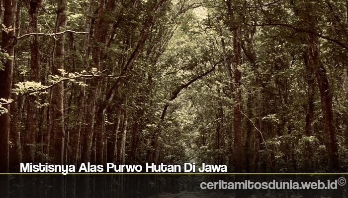 Mistisnya Alas Purwo Hutan Di Jawa